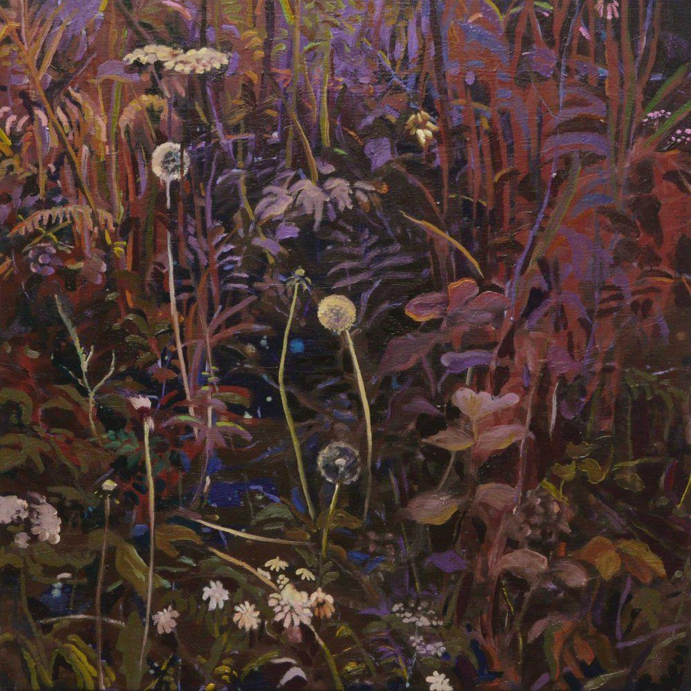 Undergrowth Alice Brasser