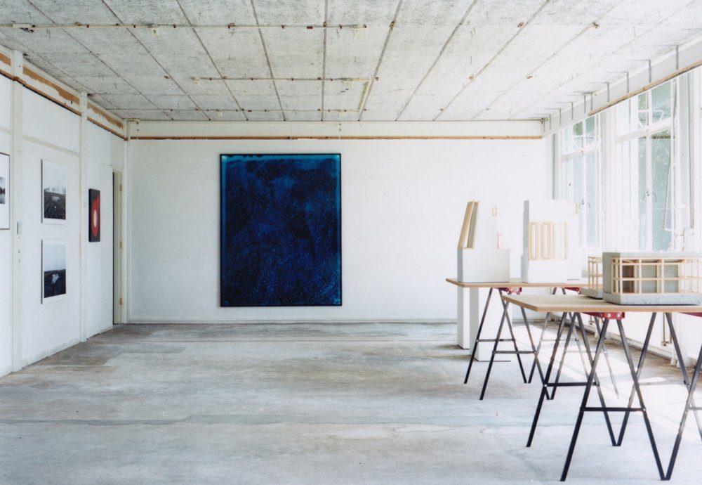 RLS installatie foto – Polystichum aculeatum Peter Svenson en Arja Hop