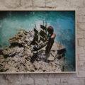 Coral, Overzicht Scarlett Hooft Graafland We Like Art Westergasfabriek