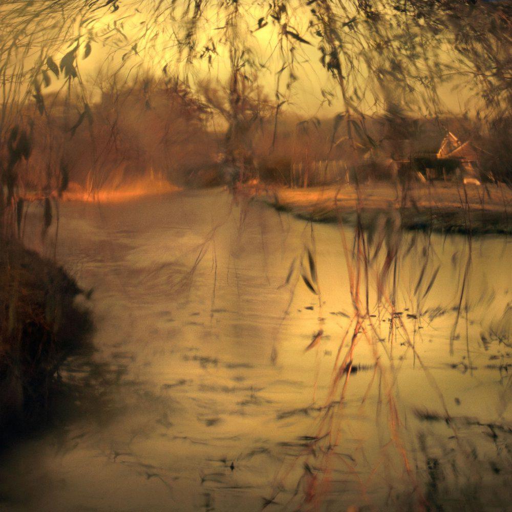 Lynne Leegte landscape multiple