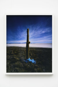 Scarlett Hooft Graafland, Blue Cloud