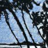 Hans Broek, speciale editie Elmina, detail 2