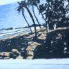 Hans Broek, speciale editie Elmina, detail 5