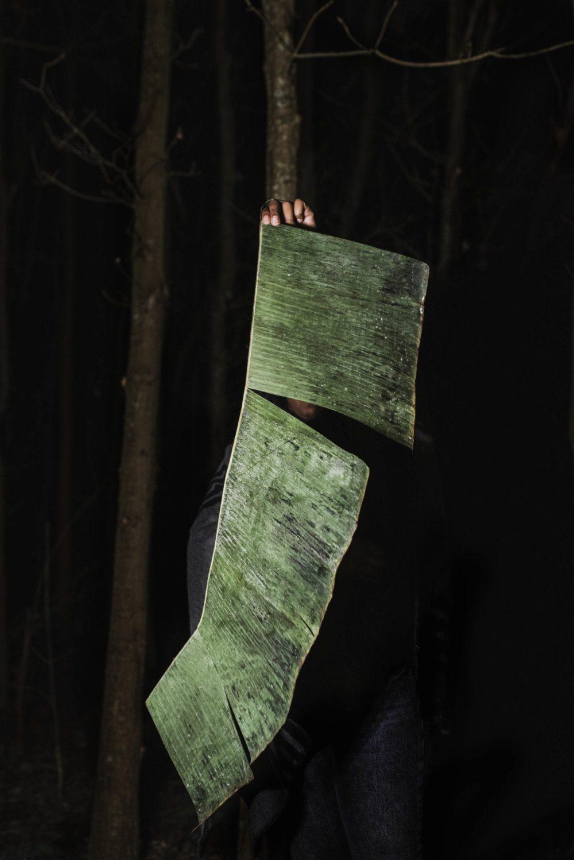 Michelle_Piergoelam-the untangled night